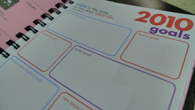 What are my Plans and Goals for 2010? May this planner help me.